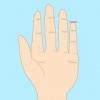 看手指知性格 小手指竟有这些预
