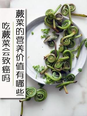 吃蕨菜会致癌吗 蕨菜的营养价值