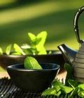 绿茶怎么喝减肥效果好 推荐五种绿茶减肥的喝法