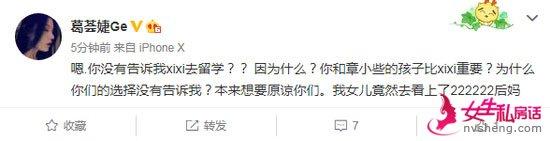 汪峰前妻不知女儿小苹果将留学:你们的孩子比xixi重要?