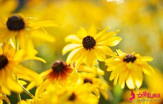 7种黄色食物 轻松重获好气色,比护肤品靠谱多了