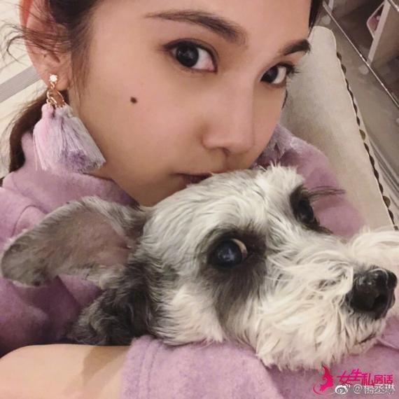 杨丞琳爱犬患病伤心至极 李荣浩飞台北探望