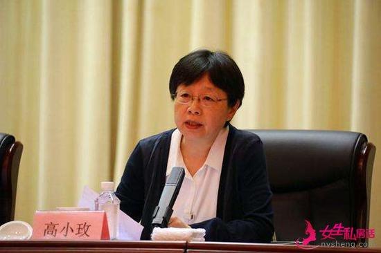 全国政协委员、民革中央副主席高小玫