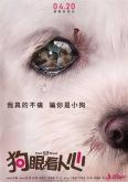 《狗眼看人心》定档4月20日 忠犬
